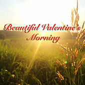 Beautiful Valentine's Morning von Various Artists