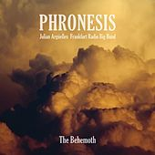 Stillness by Phronesis