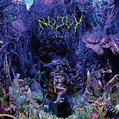 Play & Download Creep - EP by No Joy | Napster