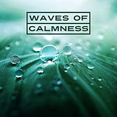 Waves of Calmness – Nature Calm Music, Soft Sounds, New Age Relaxation, Chilled Water Waves by Nature Sounds Relaxation: Music for Sleep, Meditation, Massage Therapy, Spa