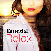 Play & Download Essential Relax – Calm Chillout, Relax on the Beach, Mellow Sounds, Summertime, Deep Chill, Pure Mind by Chillout Lounge | Napster