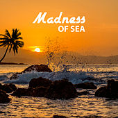 Play & Download Madness of Sea – Lounge Summer, Beach Party, Crazy Hits, Chillout Music, Brazilian Sounds, Sexy Guitar, Sun Salutation by Dance Hits 2014 | Napster