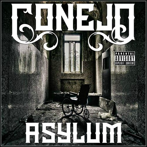 Play & Download Asylum by Conejo | Napster