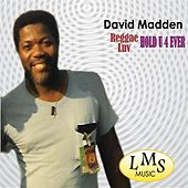 Play & Download Reggae Luv Hold U 4ever by David Madden | Napster