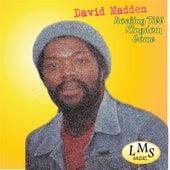 Rocking Till Kingdom Come by David Madden