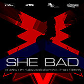 She Bad by Shurwayne Winchester