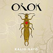 Play & Download Orok by Kalio Gayo | Napster