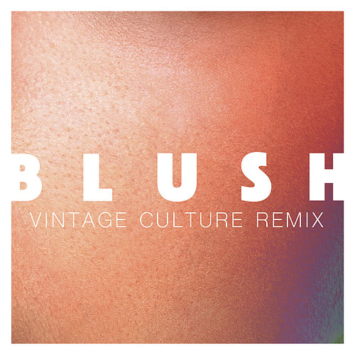 Blush (Vintage Culture Remix) de Elekfantz