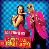Play & Download Se Sufre Pero Se Goza (Remasterizado) by David calzado y su Charanga Habanera | Napster
