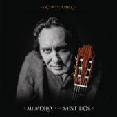 Play & Download Amoralí by Vicente Amigo | Napster
