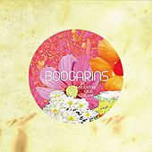 As Plantas Que Curam by Boogarins