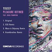 Pleasure Defined by Yousef