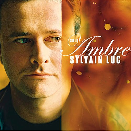 Ambre by Sylvain Luc/Bireli Lagrene