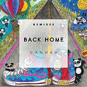 Back Home Remixes by Various Artists