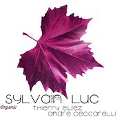 Play & Download Organic (feat. Thierry Eliez & André Ceccarelli) by Sylvain Luc/Bireli Lagrene | Napster