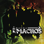 Play & Download El Ruidito by Banda Machos | Napster