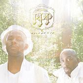 Play & Download Abundance by The Platinum Pied Pipers | Napster