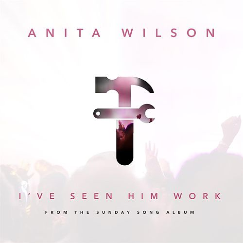 I've Seen Him Work - Single by Anita Wilson