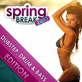 Springbreak 2017: Dubstep, Drum & Bass Edition by Various Artists