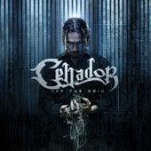Off the Grid by Cellador