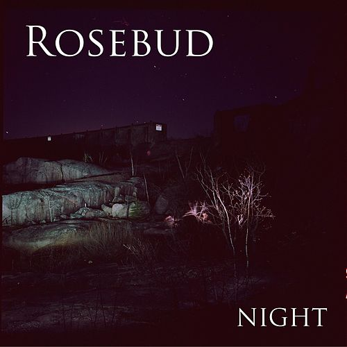 Play & Download Night by Rosebud | Napster