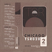 Twosyllable Records Chicago Cassette Compilation, Vol. 2 by Various Artists