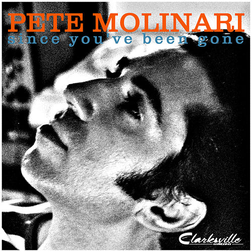Play & Download Since You've Been Gone by Pete Molinari | Napster