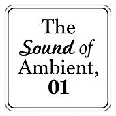Play & Download The Sound of Ambient, Vol. 1 by Various Artists | Napster