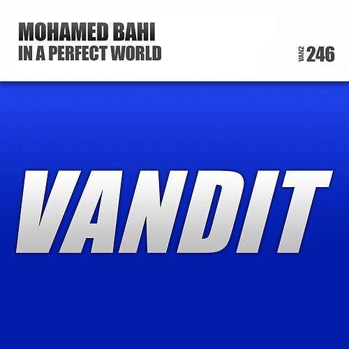 Play & Download In a Perfect World by Mohamed Bahi | Napster
