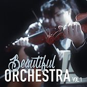 Play & Download Beautiful Orchestra, Vol. 1 by Various Artists | Napster