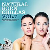 Natural Born Chillas, Vol. 7 (The Ultimate Lounge & Chill Out Experience) by Various Artists