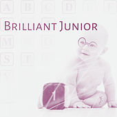 Brilliant Junior – Educational Music for Baby, Better IQ, Classical Music for Kids, Perfect Mind by Junior Einstein Music World