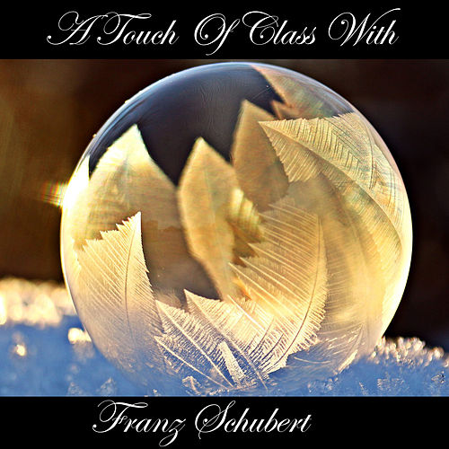 A Touch Of Class With Franz Schubert by Franz Schubert