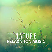 Play & Download Nature Relaxation Music – Rest with New Age, Nature Sounds, Music for Stress Relief, Relax Yourself by Nature Tribe | Napster