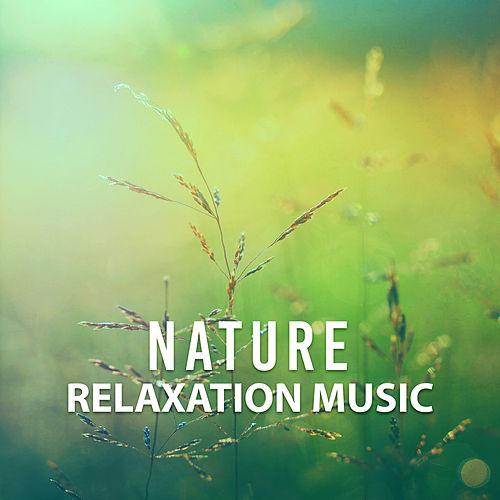 Play & Download Nature Relaxation Music – Rest with New Age, Nature Sounds, Music for Stress Relief, Relax Yourself by Nature Tribe   Napster