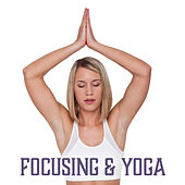 Play & Download Focusing & Yoga – Meditation Music, Reiki Sounds, Better Concentration, Peaceful Mind, Buddha Lounge, Yoga Meditation by Yoga Tribe | Napster