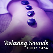 Relaxing Sounds for Spa – New Age Relaxation, Music for Massage, Sounds to Calm Down, Rest in Sauna by Echoes of Nature