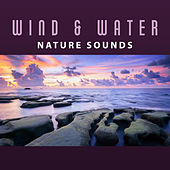 Wind & Water Nature Sounds – Relaxing Music, Nature Music, Meditation, Relax, Instrumental New Age by Sounds Of Nature