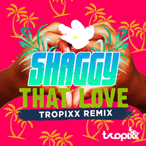 That Love (Tropixx Remix) by Shaggy