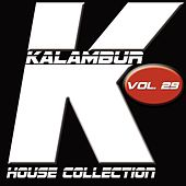 Play & Download Kalambur House Collection, Vol. 29 by Dandy | Napster