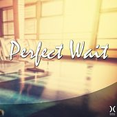 Play & Download Perfect Wait by Various Artists   Napster