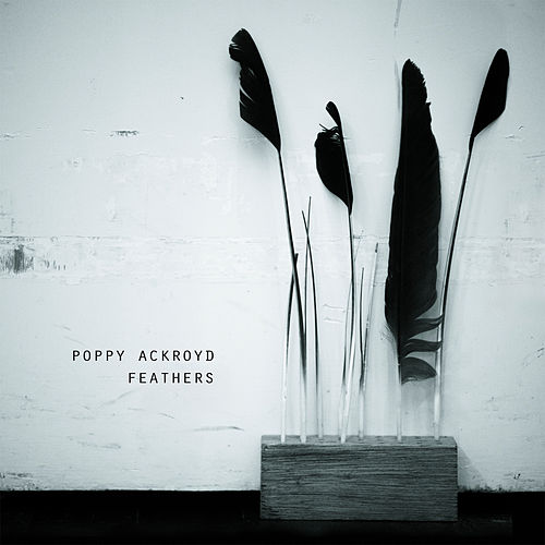 Feathers by Poppy Ackroyd