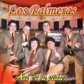Así Es La Vida by Los Palmeras