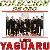 Coleccion De Oro by Los Yaguaru