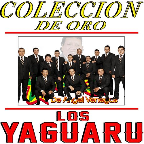 Play & Download Coleccion De Oro by Los Yaguaru | Napster
