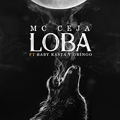 Play & Download Loba by Baby Rasta & Gringo | Napster