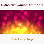 Feels Like so Long by Collective Sound Members
