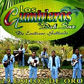 Play & Download 29 Exitos De Oro by Los Cumbieros Del Sur | Napster