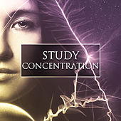 Play & Download Study Concentration – Instrumental Sounds for Easy Learning, Development Songs, Deep Focus, Clear Mind, Mozart, Beethoven by Brain Power Collective | Napster