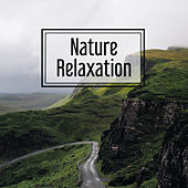 Play & Download Nature Relaxation – Soft New Age Music, Relaxation Music, Calmness, Deep Rest, Relax After Work by Sounds of Nature Relaxation | Napster